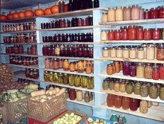 Now that is a well-stocked cold cellar!  Well, it must be a cool (and relatively dry) cellar because of the canned goods and squash.  Awesome!