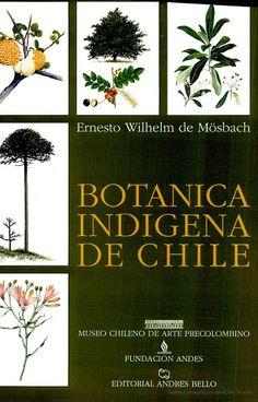 Botánica Indígena de Chile - Ernesto Wilhelm De Moesbach - Google Libros