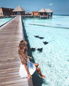 wanderlust travel Bora Bora - hangin with the Manta Rays Wanderlust Travel, Places To Travel, Places To See, Travel Destinations, Winter Destinations, Shotting Photo, Poses Photo, Destination Voyage, Photos Voyages