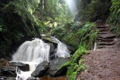 Puck's Glen, near Dunoon, in the west of Scotland