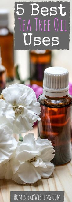 Here are the 5 best ways to use tea tree oil. Simple uses that are easy to use. Acne, athlete's foot, nail fungus, dandruff, and natural cleaning.