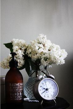 White lilacs rocks