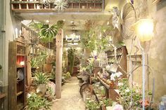 前回の記事のカフェに行った後ものすごくお気に入りで何度もお邪魔しているお店フラワーノリタケとティザーヌ•インフュージョンにも行ってきました* Flower N…