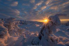 Hello Morning! by Jørn Allan Pedersen on 500px
