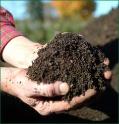 Compost & Soil Fertility – A Shitty Topic - The Permaculture Research Institute
