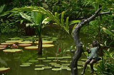 Singapore Botanic Garden - Green