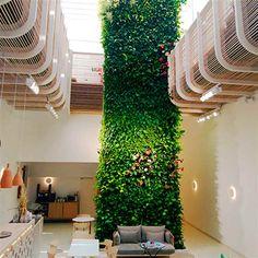 Jardín vertical interior en Ibiza, España