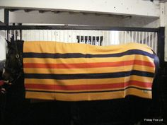 First lay the Witney blanket out along the length of the horse's back with the stripes running front to back.