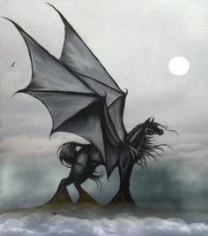 Dragon Horse Pictures, Images and Photos