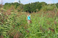 Struinen en wandelen langs de Kleine Beerze, Brabant, Nederland