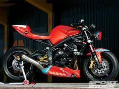 triumph daytona 675 cafe racer | The Street Triple R machines used for the ParkinGO European series ...