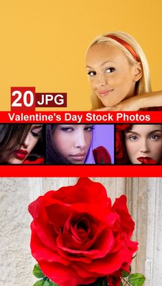 Valentine's Day Stock Photos Free Download,Valentine's Day Stock Photos,Stock Photos,Stock Photos Free Download,Stock Photos Free