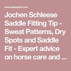Jochen Schleese Saddle Fitting Tip - Sweat Patterns, Dry Spots and Saddle Fit - Expert advice on horse care and horse riding