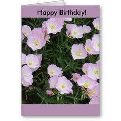 """Pretty in Pink"" Birthday Card"