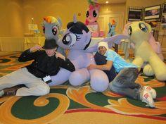 Massive, Life-Size My Little Pony Plushes