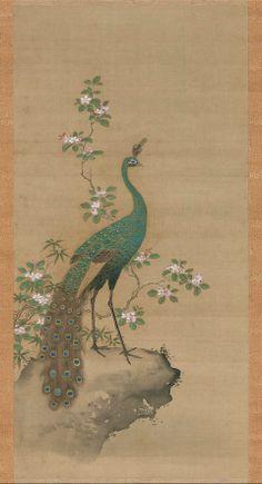 Peacock and Peach Blossoms      孔雀図      Japanese, Edo period, latter half of the 17th century     Attributed to Kiyohara Yukinobu, Japanese, 1643–1682