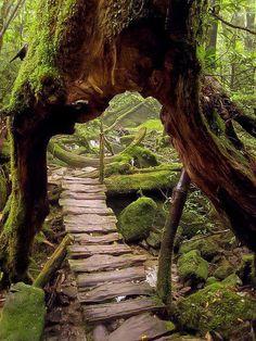 Top 20 Amazing Natural Wonders - Unbelievable Attractions