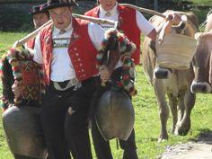 Spätsommer ist die Zeit der Alpabzüge im Appenzellerland #Appenzellerland #Switzerland #Brauchtum