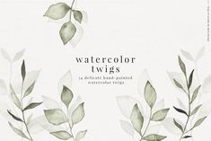 Ad: Twigs & Wreaths watercolor sketches by Skyla Design on The beautiful collection Twigs & Wreaths combines pencil sketched illustrations and hand-painted watercolors to create delicate designs. Botanical Drawings, Botanical Illustration, Graphic Illustration, Watercolor Images, Watercolor Sketch, Watercolor Paintings, Wreath Watercolor, Watercolor Flowers, Watercolor Wedding