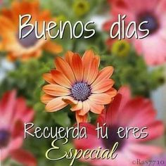 Discover recipes, home ideas, style inspiration and other ideas to try. Morning Love Quotes, Good Morning Messages, Good Morning Greetings, Morning Images, Good Morning In Spanish, Hug Quotes, Life Quotes, Phrase Of The Day, Spanish Quotes