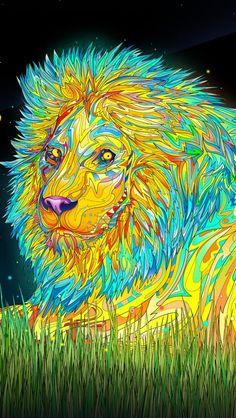 Art Creative Trippy Multicolor Lion Animals HD