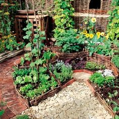 This small circular garden is nice!