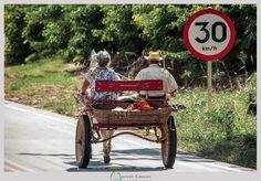 Charrete em Siverânia (MG) (Foto: Marcos Lamas) # Minas Gerais # Brasil # Brazil