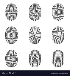 Find Nine Grey Fingerprint Types Detailed Vector stock images in HD and millions of other royalty-free stock photos, illustrations and vectors in the Shutterstock collection. Thousands of new, high-quality pictures added every day. Flat Design, Web Design, Logo Design, Graphic Design, Free Vector Images, Vector Art, Vector Stock, Vector Icons, Types Of Fingerprints