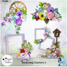 Birdsong Clusters 2 (PU) by Louise