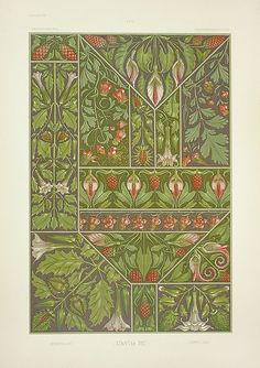 The Plant in Art & Trade, Antique prints of ornamental decoration by Anton Seder, Art Nouveau prints, Motifs Art Nouveau, Design Art Nouveau, Art Nouveau Pattern, Art Design, Vintage Botanical Prints, Antique Prints, Botanical Art, Vintage Art, Botanical Drawings