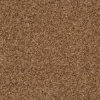 Carpet Sample - Cressbrook III - In Color Thatched Roof 8 in. x 8 in.