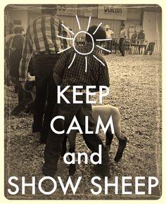Keep calm show sheep