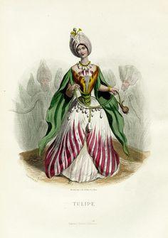 Tulipe by Grandville, 1846