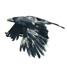 Die Raven-Kunst Druck der original Aquarell von TheJoyofColor