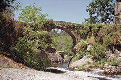 GR 94 Rural de Galicia Es una vía que comunica el mar y la montaña en dirección Sur-Norte. La ruta en Vigo se acerca a dos promontorios conocidos por sus vistas panorámicas: A Madroa sobre la Ría de Vigo y el Castro de Negros sobre el valle del río Maceiras, Redondela y la ensenada de S. Simón.
