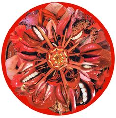 Kare Grayson MFA. Red Mandala paper collage photo print. Also available as mounted round.