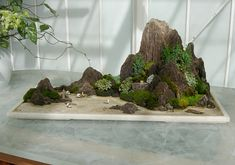 Earth Art Gallery: Penjing is the ancient Chinese art of creating landscapes, including plants, water and miniature figures and structures, on stones. It's considered the ancestor of suiseki.
