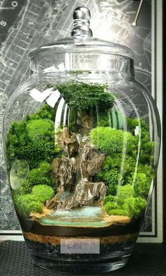 Home DECOR Mini Terrarium / Wasserfall – Home DECOR Mini Terrarium / Waterfall – Waterfall terrarium with live moss plants in hexAmazing big waterfall terrarium with Raku geWalkways Home Decor Project Ideas & Tutorials Mini Terrarium, Terrarium Scene, Glass Terrarium, Terrarium Ideas, Fairy Terrarium, Terrarium Decorations, Terraria, Bonsai Garden, Succulents Garden