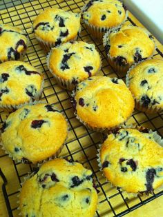 "Blueberry Yogurt Oatmeal Muffins - These muffins are culinary proof that ""big things come in small packages"", because this recipe packs a punch in both taste and health benefits. The natural deliciousness of the blueberry is encased in a moist, dense, sweet, and buttery muffin made possible by the use of yogurt instead of oil, which gives this classic breakfast food a little twist."