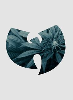 Stream TOKE (Wu-Tang Edition)- Careful by TOKE from desktop or your mobile device Kung Fu Martial Arts, Martial Arts Movies, Wu Tang Tattoo, Wu Tang Collection, Arte Do Hip Hop, Banners, Hip Hop Classics, Stoner Art, Arte Cyberpunk