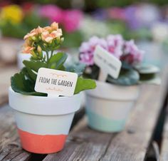 Add a quick pop of color to any gardening pot with colored embossing powder, and be sure to add an adorable little pick made with the From The Garden stamp set and Handpicked Framelits.