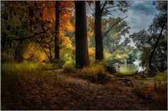 I saw her standing there - Gabor Dvornik Photography