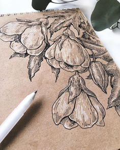 lovely ink drawing on toned paper _______________________________ penandinkonpa. - lovely ink drawing on toned paper _______________________________ Paper Drawing, Painting & Drawing, Flower Art Drawing, Flower Drawings, Flower Drawing Tutorials, Flower Sketches, Ink Pen Drawings, Drawing Sketches, Drawing Ideas