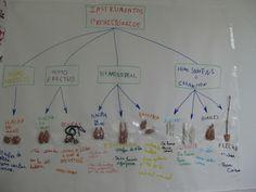 prehistoria. Súper interesante página con proyectos para vivir el estudio de la prehistoria. Construcción casas, de herramientas, etc