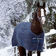 To Blanket or Not to Blanket? Keeping your horse comfortable this winter - https://www.nelsonmfg.com/blog/page/2/