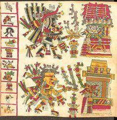 Codex Cospi