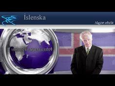 Algjört eftirlit  | Íslenska | klagemauer.tv