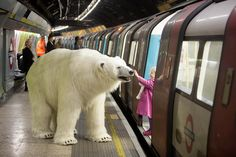 Polar bears - An eight-foot polar bear has been let loose around London. The reason? A PR stunt by Sky Atlantic to promote its new TV series, Fortitude. This arctic stunt was quickly picked up from publishers from the Mirror to Mashable. Going forward marketers should forget buying ads and do something different/creative in front of a crowd to make news headlines themselves. Photo via Flickr/ TaylorHerring