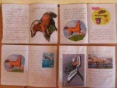 Játékos tanulás és kreativitás: Olvasás kicsit másképp 2.