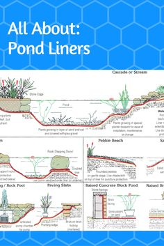 Pond liners are a very important part of pond planning. We can help you calculate how much liner you need, along with how to join liner, and other handy tips.